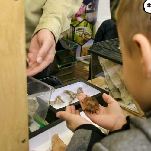www.ilawa.pl-piknik-inspiracji-ilawa_034-Image34