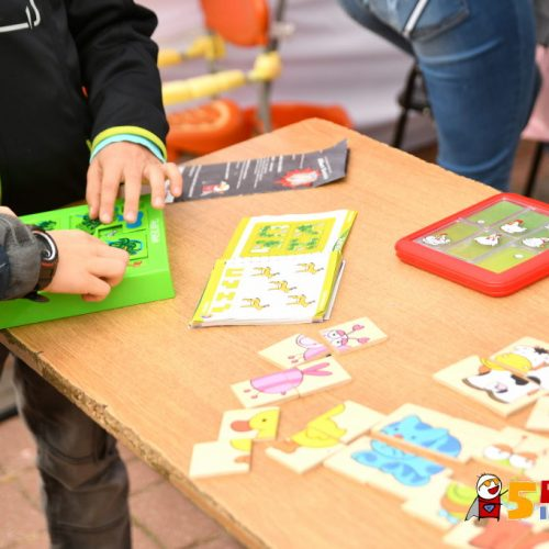 www.ilawa.pl-piknik-inspiracji-ilawa_159_RON_3314