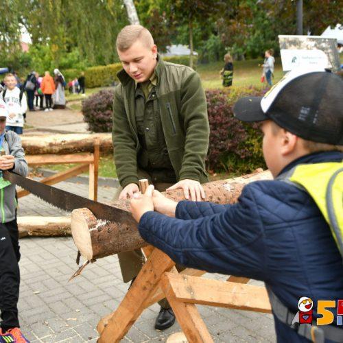 www.ilawa.pl-piknik-inspiracji-ilawa_190_RON_3354
