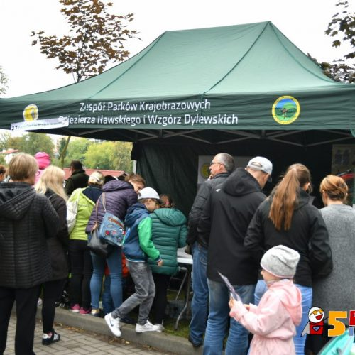 www.ilawa.pl-piknik-inspiracji-ilawa_213_RON_3382