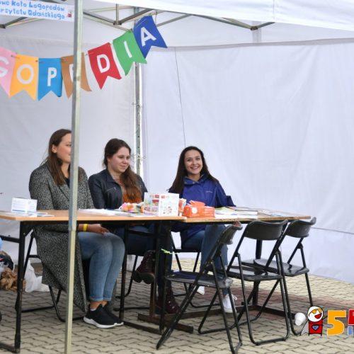 www.ilawa.pl-piknik-inspiracji-ilawa_226_RON_3397
